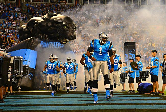 The Carolina Panthers are a National Football League (NFL) franchise and a squad that is part of the NFC South