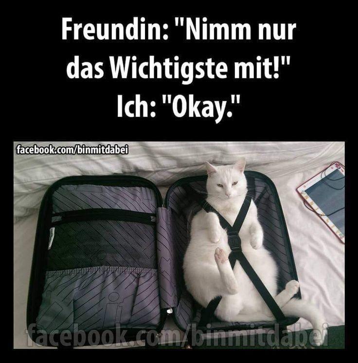 Friends: Only Tak # funny-animals- # friends #lustigeriere #nur #Tak