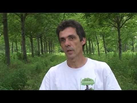 """Maraîchage bio sous les arbres - Denis Flores (Hérault) - Denis Flores, maraîcher bio à Vézénobres, a acheté des terres que personne ne voulait parce qu'il y avait des arbres ! Moins d'arrosage, plus de protection, plus de confort, plus de fertilité, de bons rendements : après deux années, il constate avec satisfaction que """"tout ou presque pousse très bien sous les arbres."""" Etape suivante : le non-travail du sol !"""