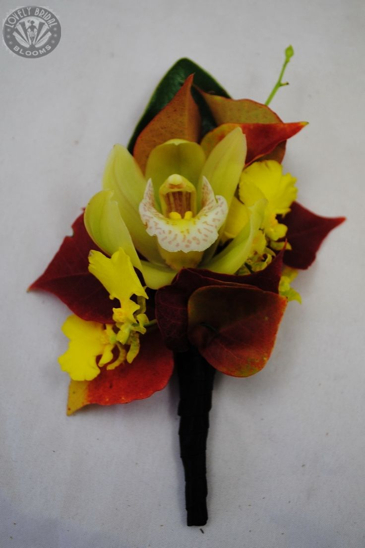 Mens buttonhole featuring a mini cymbidium orchid, dancing lady orchid and autumn foliage