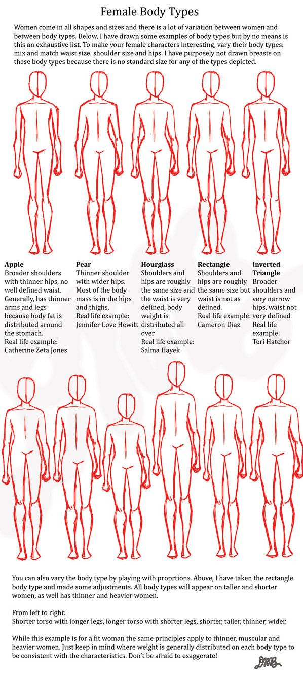 The 8 best Top things images on Pinterest   Human anatomy, Drawing ...