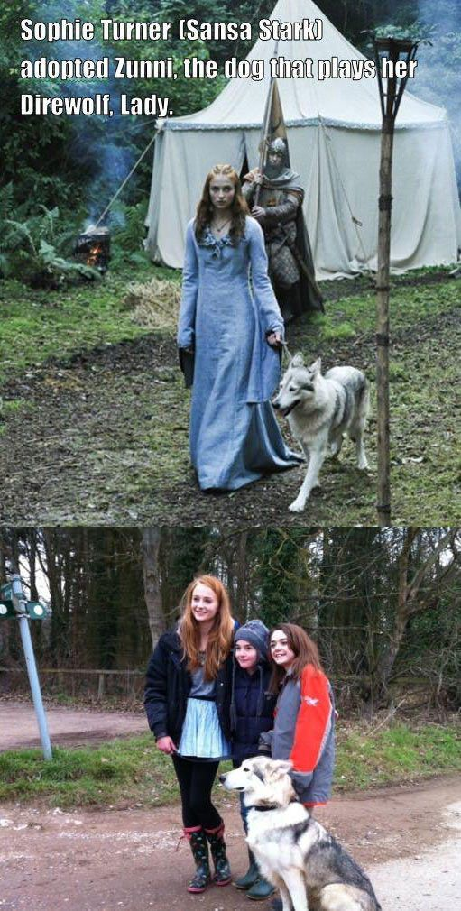Sansa Stark and her direwolf... I AM IN LOVE!!!!! this is amazing!