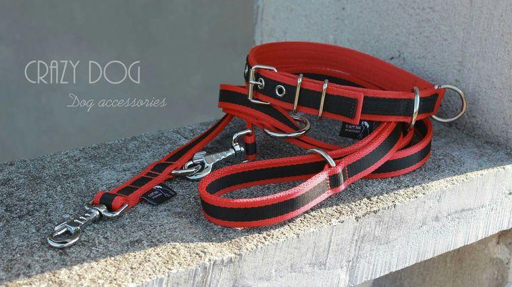 #crazydog #dog #accessories