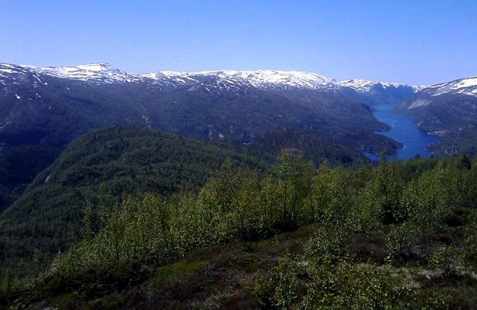 Reforestation in Norway: showing what's possible in Scotland and beyond - from Rewilding Britian