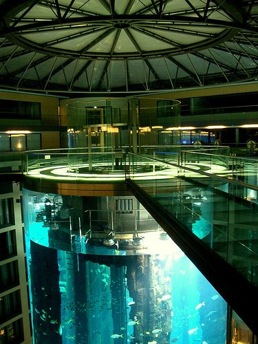 AquaDom in Germany's Radisson Blu Hotel in Berlin.  Completed in 2003 at an estimated cost of 12.8 Million Euros.  Holds 2600 fish from 56 species and contains a two-story clear, interior elevator.