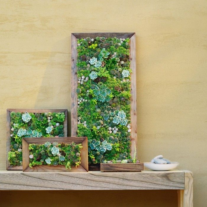 7 best Rahmen images on Pinterest | Outdoor gardens, Backyard ideas ...