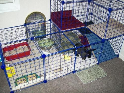 "BunSpace.com Forum: creating an inexpensive bunny ""condo""/ indoor housing"