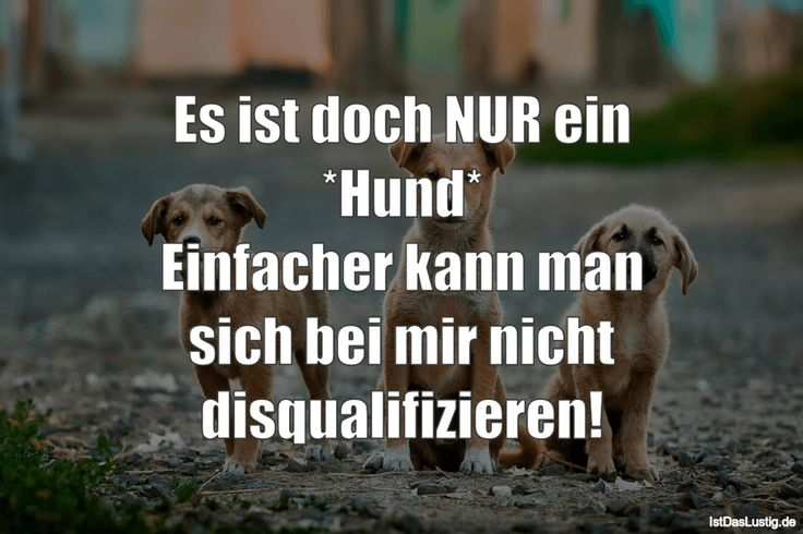 It's ONLY a * dog * Easier you can not disqualify me! … found on www.istdaslustig …. #funny # sayings #fun #fun