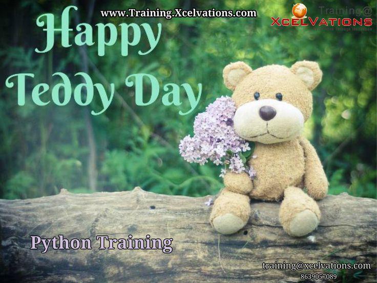Happy Teddy Day in 2020 National teddy bear day, Teddy