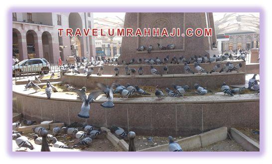 Daftar Layanan Umroh Desember | Biro Umroh Haji ONH Plus Jakarta | Travel Aida Tourindo 021 4444 4682