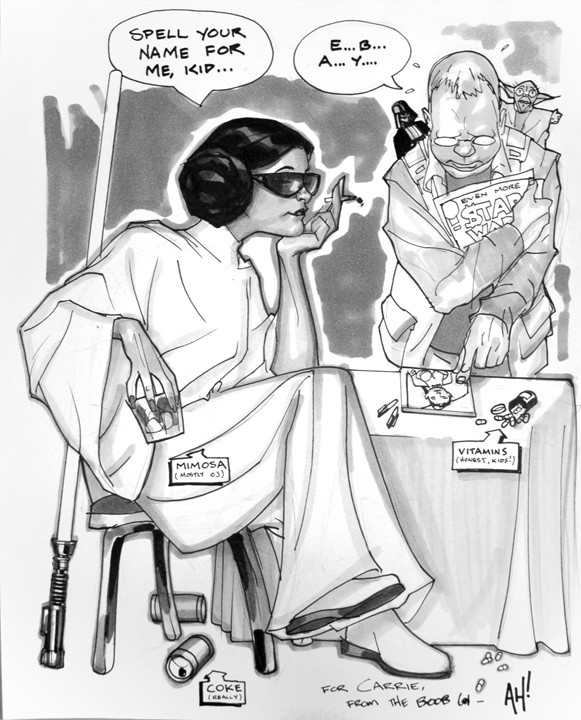 Carrie Fisher by Adam Hughes IF YOU ONLY KNEW HOW TRUE THIS PIC WAS!