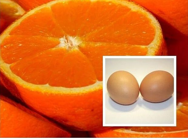 "A 15-day diet of eggs intended for the obese, and those who have problems with digestion or impure skin. Proved to be a great ""cleaner"" of the skin, reduces the absorption of fat in…"