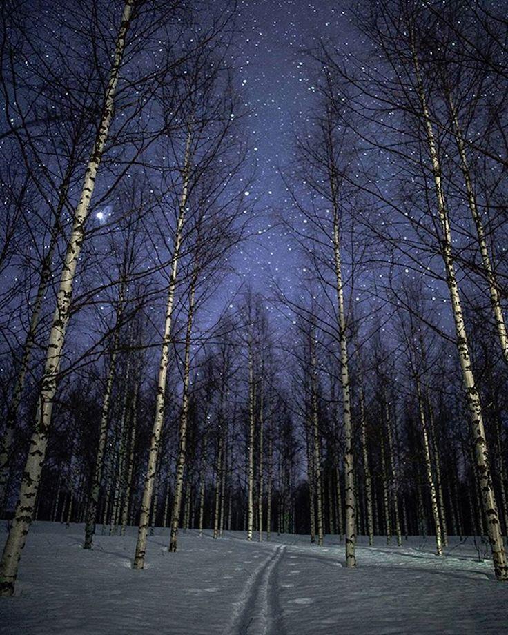 invierno Finlandia Tiina Törmänen
