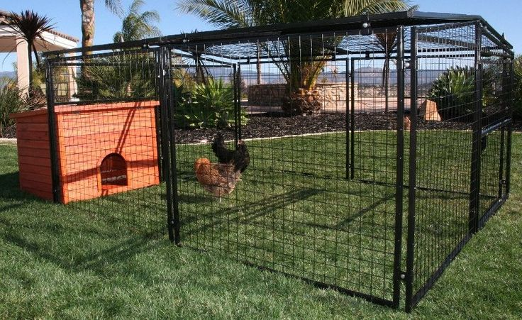 Universal Welded Wire Pen with Free Wood Hutch with 4 Nesting Boxes!