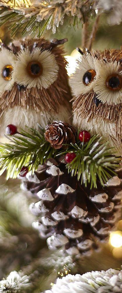 "weheartchristmas: "" Stockings (by Bury Gardener) """