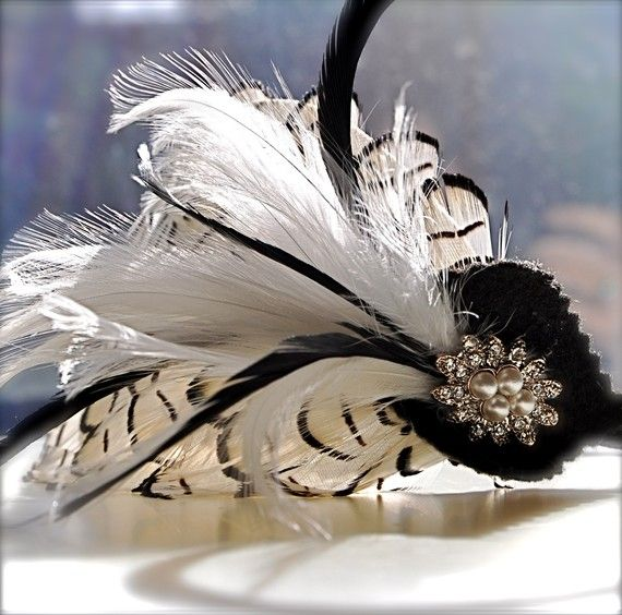 Lady Mia....feather fascintor....
