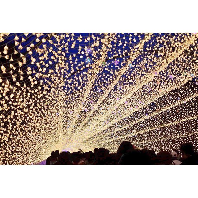 Instagram【m2m3_photo】さんの写真をピンしています。 《* この前、なばなの里に人生で初めて行ってきました☺️💕 . 本当に感動感動感動!!! 言葉を失うほどの綺麗さでした😭💓 . ちょっと続けて写真載せます🤗 * #illumination #shining #beautiful #nightview #nabananosato #tunnel #view #イルミネーション #キラキラ #なばなの里 #綺麗 #夜景 #景色 #トンネル #photography #coregraphy #カメラ女子 #写真好きな人と繋がりたい #カメラ好きな人と繋がりたい #ファインダー越しの私の世界 #nikon #nikon1j5》
