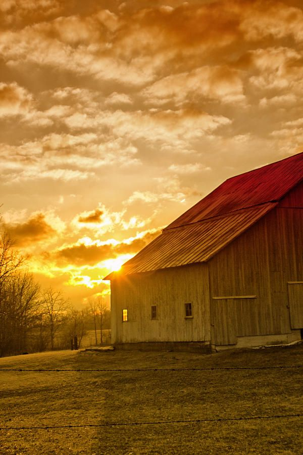 ♂ Aged with beauty - old barn house under the early morning golden sunlight