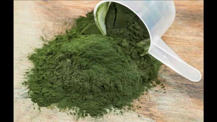Conoce una de las mejores proteínas vegetales que existe. Con más proporción que la carne y de más fácil absorción.
