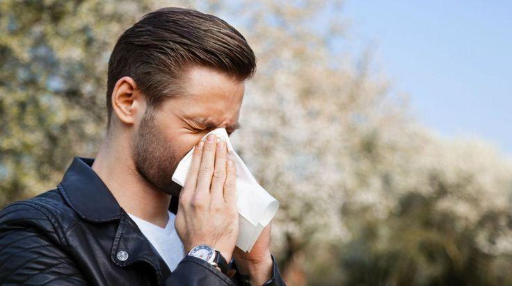 Qué síntomas puede indicarte que padeces rinitis alérgica - TN.com.ar