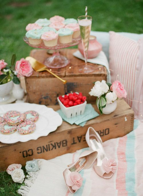 Pink Picnic with Champagne & Cupcakes