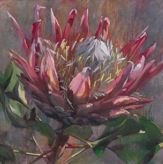 The beautifully painted image of South AFrica's national flower, The Protea painted by local artist Shaune Rogatschnig