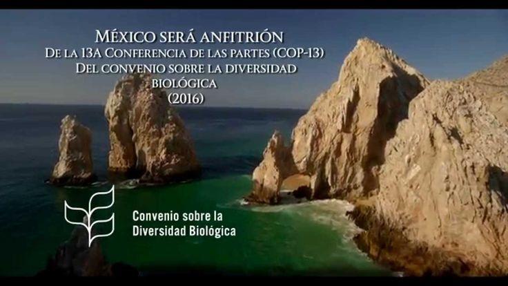 México país megadiverso