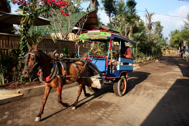 No cars... No motorbike...  This is how we move around.  Horsecart, also called cidomo here
