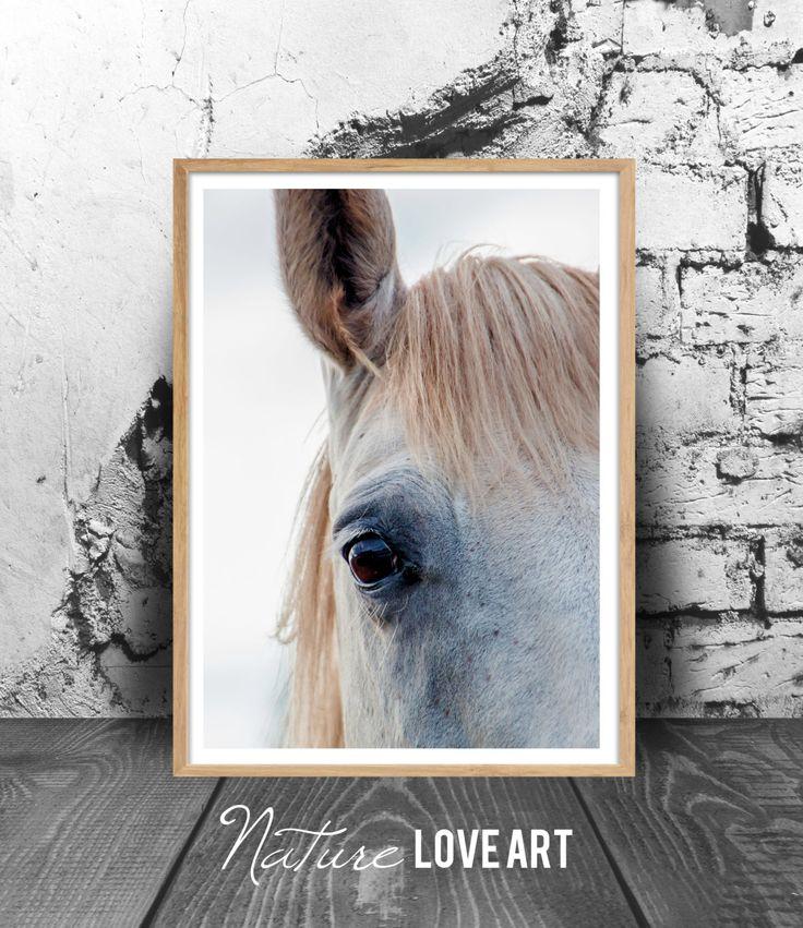 Photographie de cheval, photo couleur, cheval islandais, poster cheval blanc, décoration animal, déco murale moderne, poster cheval de la boutique NatureLoveArt sur Etsy