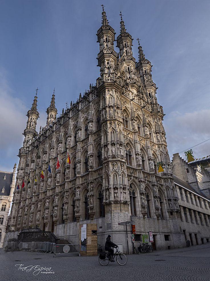 """https://flic.kr/p/24VAG1G   Historisch Stadhuis van Leuven (Ayuntamieto)   """"Perseguir tus sueños siempre será el viaje de tu vida"""" Anónimo"""