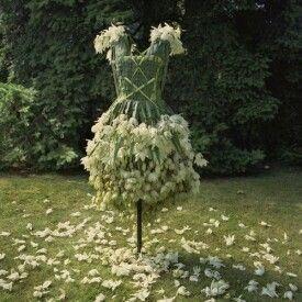 Doğal moda