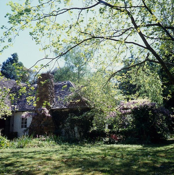 Garden Ideas Victoria Australia the 28 best images about garden on pinterest