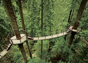 Capilano Suspension Bridge  3735 Capilano Road  North Vancouver,  British Columbia  Canada, V7R 4J1