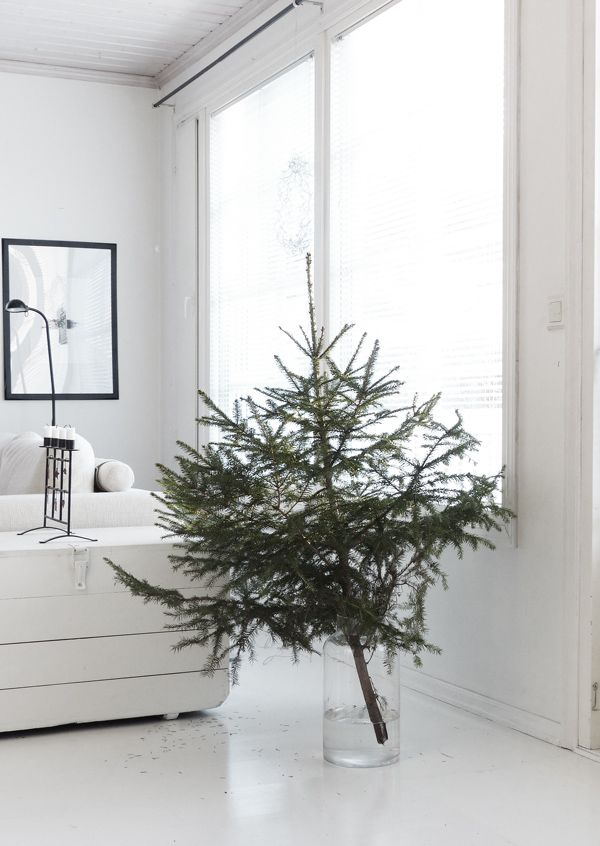 Minimal Christmas tree in glass vase