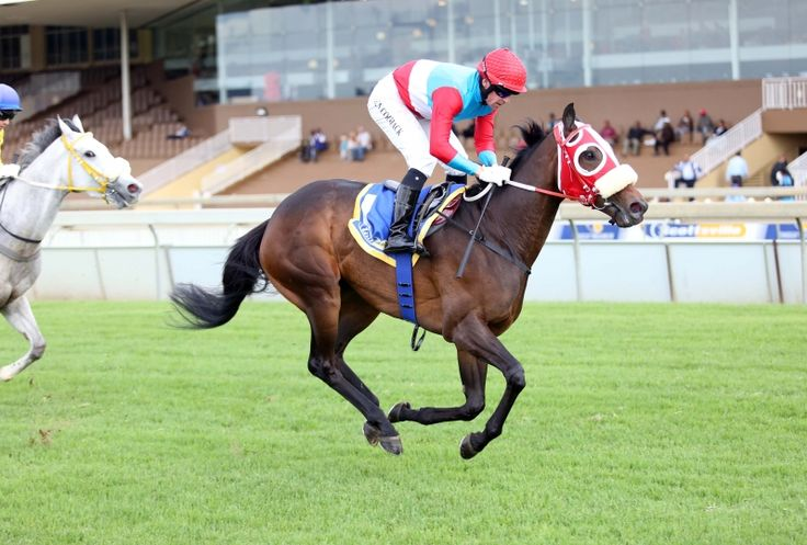 Summerhill Race Results: Scotsville 23/11/14 Race 8: CONDITIONS PLATE (F & M) 1600m Winner: ADMIRAL'S EYE Admire Main (JPN) x Surfers Eye by Elliodor (FR). Bred By:Mr P A M Magid and Summerhill Stud (Pty) Ltd  Owner: The Fire Racing Trust (Nom: Mr Alesh Naidoo). Trainer: C Laird Jockey: Sean Cormack   Gold Circle Photo  www.summerhill.co.za
