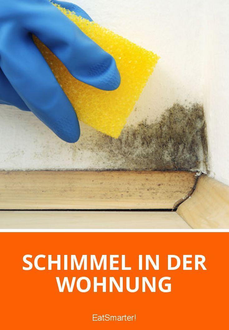 Schimmel in der Wohnung | eatsmarter.de