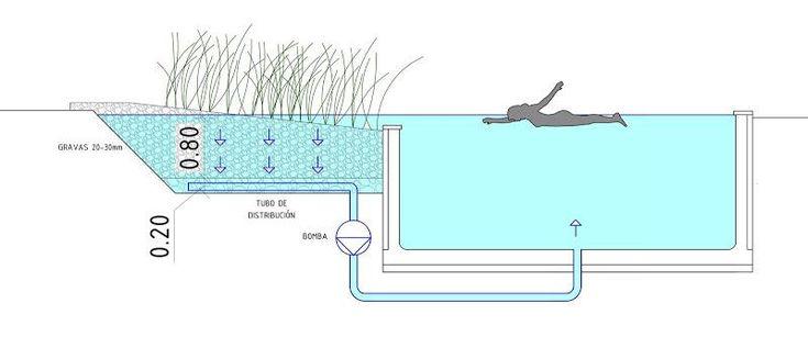 Como hacer una piscina natural.                                                                                                                                                                                 Más