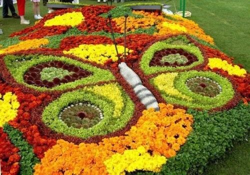 Let's play with flowers - Gardening Art! |Butterfly
