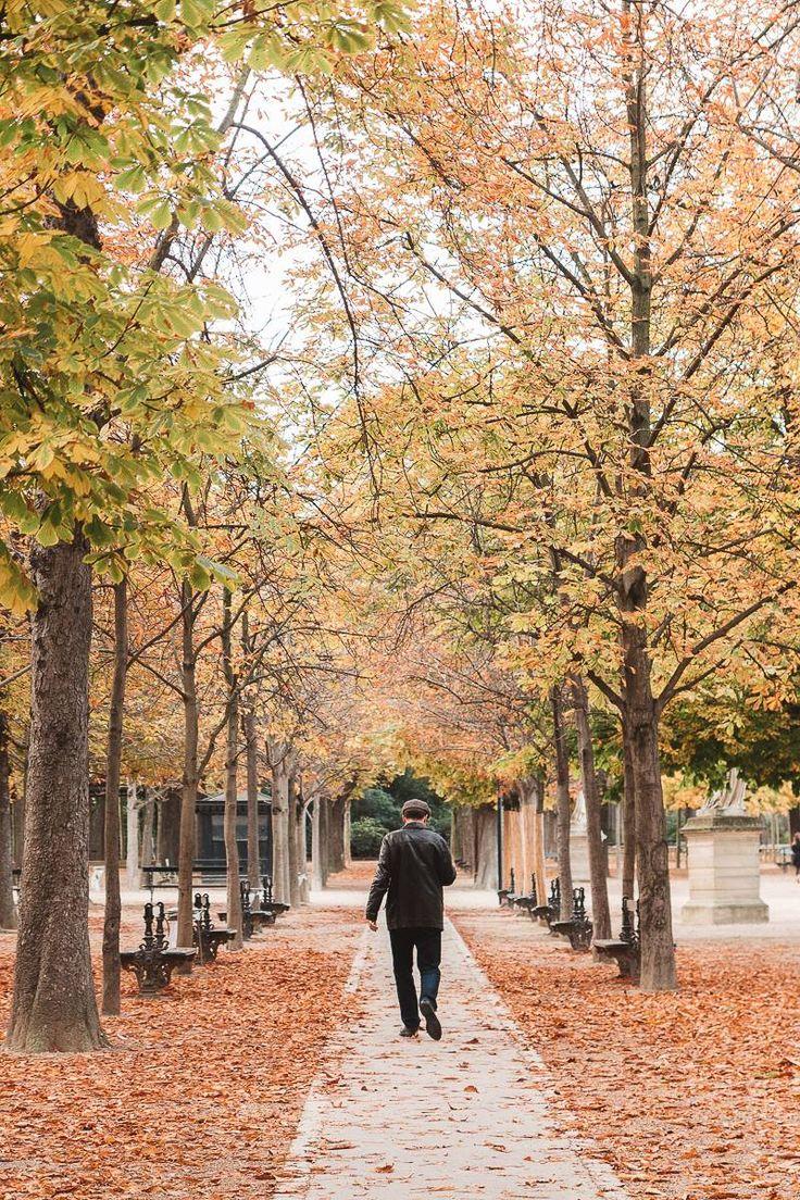 Jardin du luxembourg passant luxembourgautumn winter