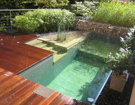 Eco-pools are the new thing... they use reed beds to filter the water - no chemicals needed