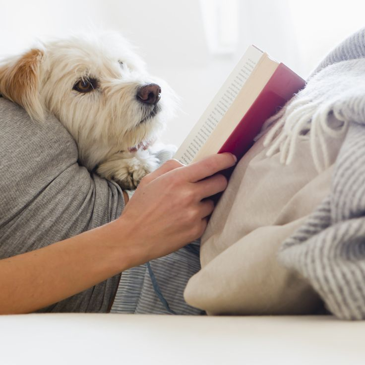New research is great news for bookworms. Book readers lived an average of 23 months longer than non-book readers. #livelongerbetter