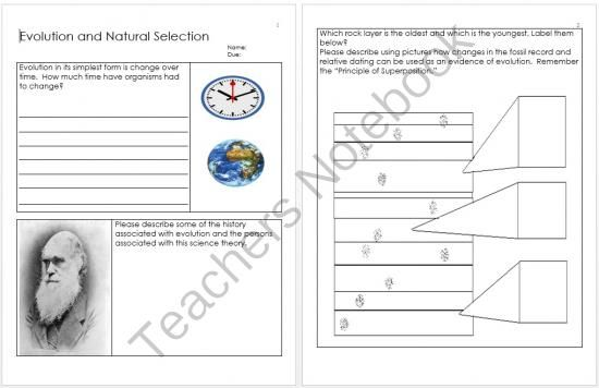 Evolution and Natural Selection Homework from Science from