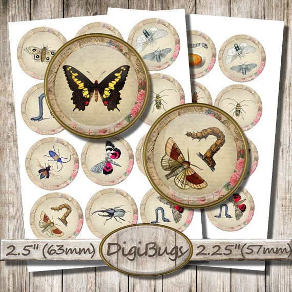 Insects Butterflies Caterpillars Beetles, Digital Collage Sheet, Circles for Mirrors Pendants Toppers, Instant Download, a7