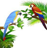 Rainforest activities for school age children.