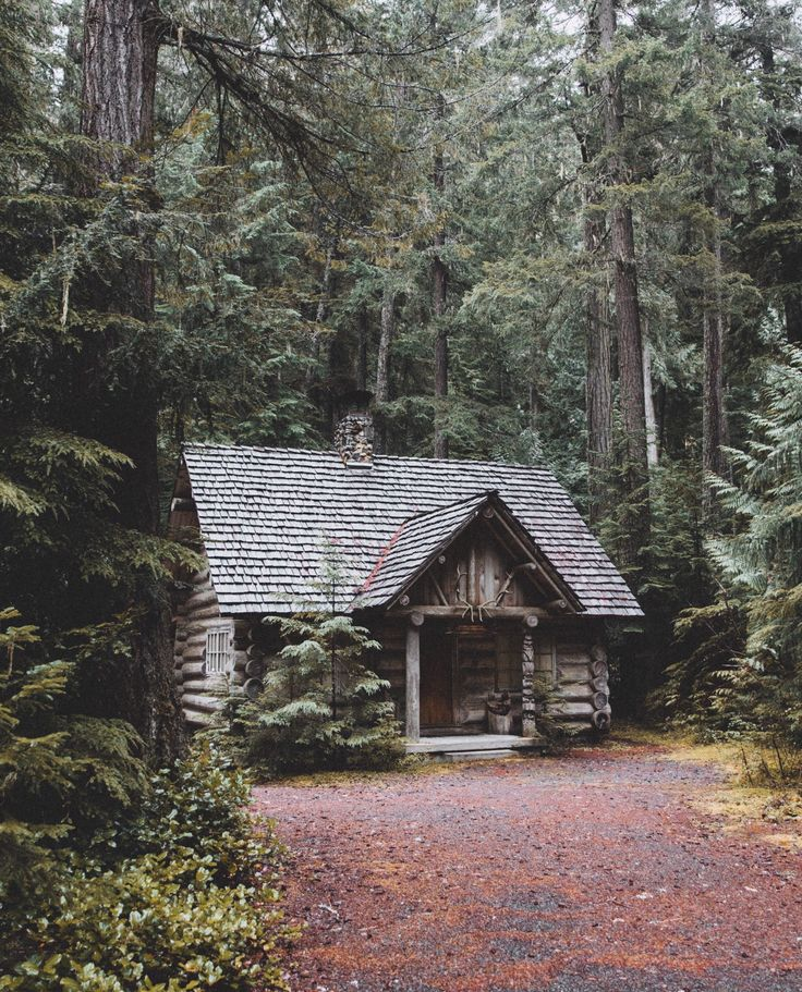 "This would be my happy place forever  "" Cabin in the woods """
