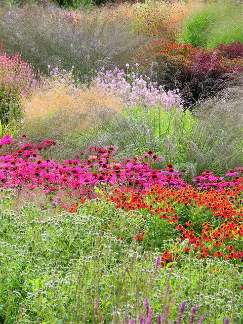 Pensthorpe, Norfolk by UltraPanavision, via Flickr - Orangered and pink are not my favourite color combo, but if you take one of them away, this design looks wonderful!