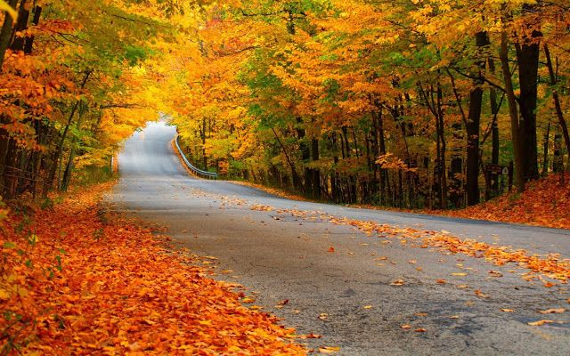 10 Latest Fall Country Backgrounds For Computer Full Hd: The Most Beautiful Scenery In The