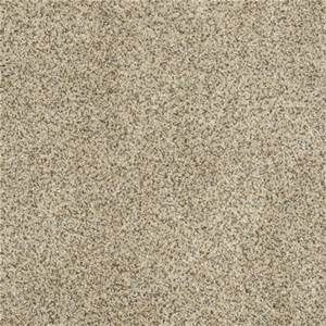 Stainmaster Carpet Colors - Yahoo Image Search Results