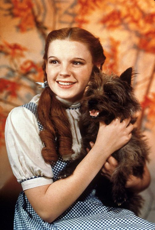 """Dorothy Gale from the movie """"The Wizard of Oz"""" (Judy Garland)"""