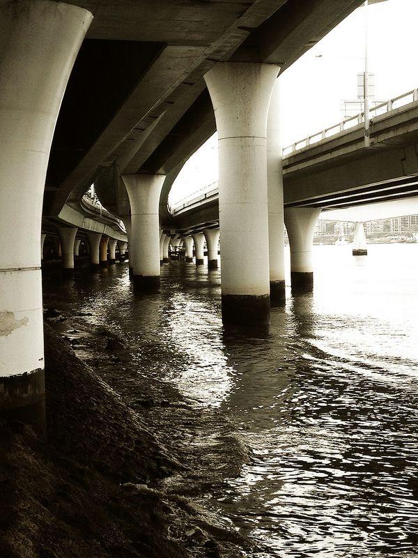 Brisbane River along bikeway